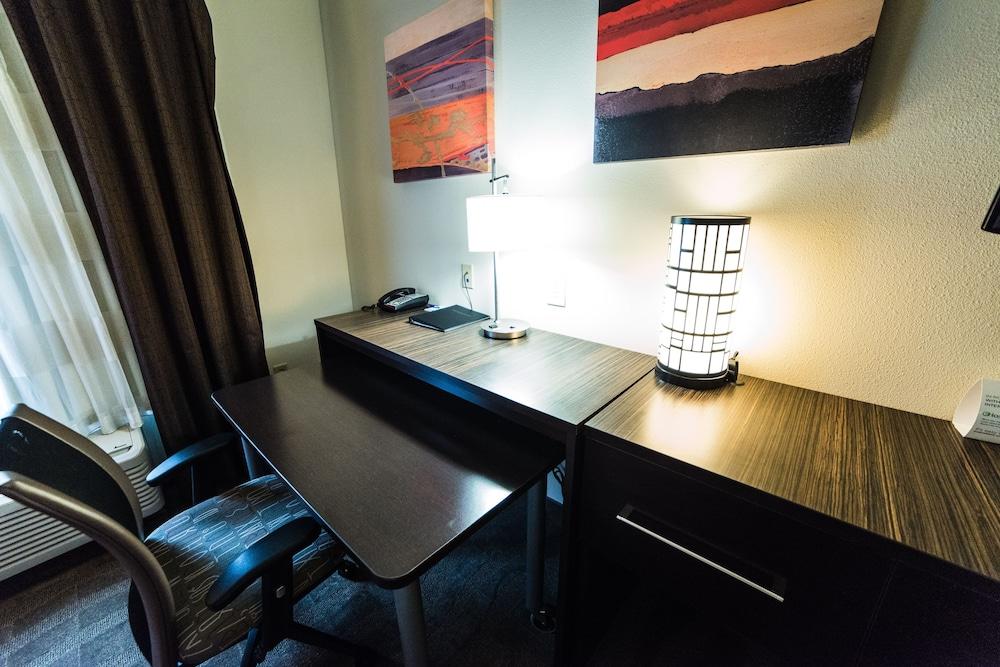 홀리데이 인 익스프레스 호텔 & 스위트 로킹검(Holiday Inn Express Hotel & Suites Rockingham) Hotel Image 17 - In-Room Amenity