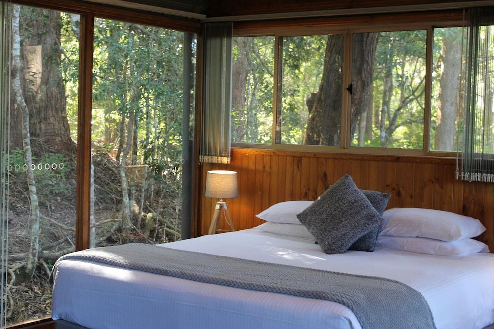 콘달릴라 에코 리조트(Kondalilla Eco Resort) Hotel Image 20 - Guestroom