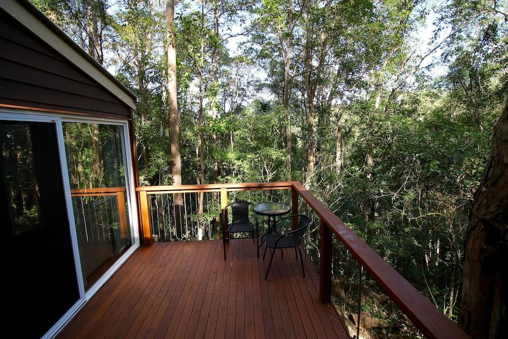 콘달릴라 에코 리조트(Kondalilla Eco Resort) Hotel Image 112 - Porch