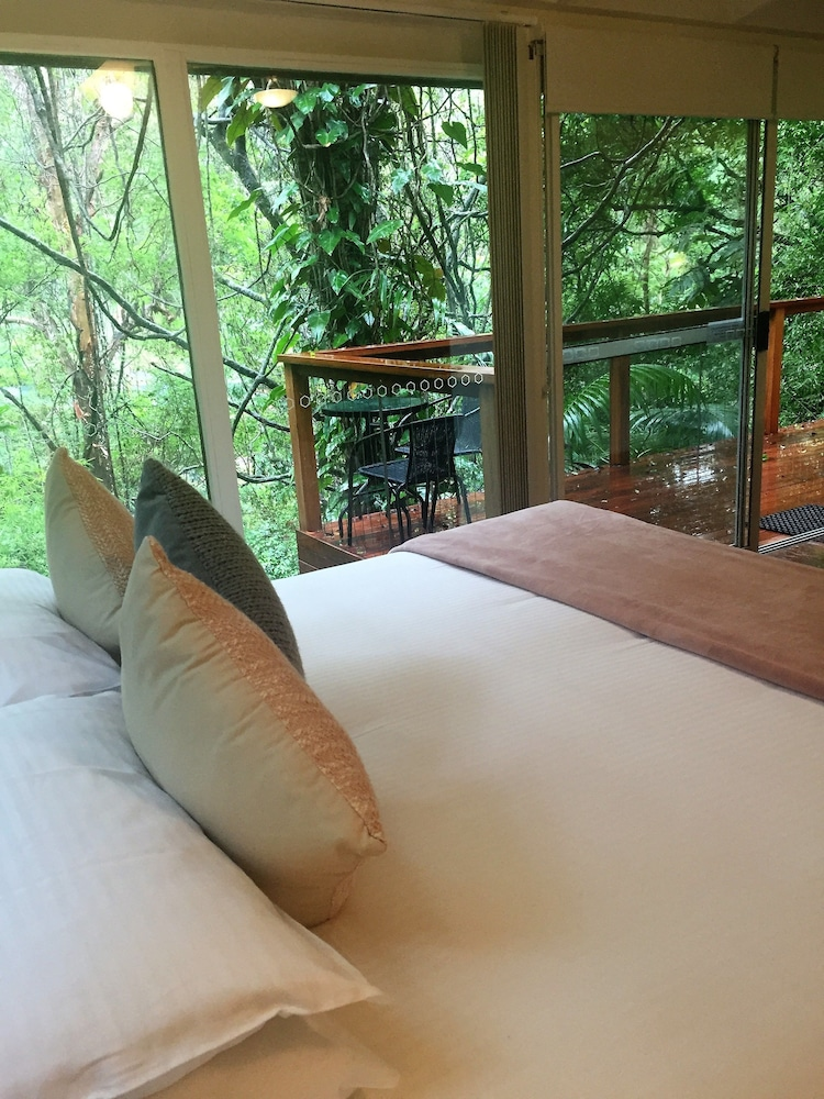 콘달릴라 에코 리조트(Kondalilla Eco Resort) Hotel Image 21 - Guestroom