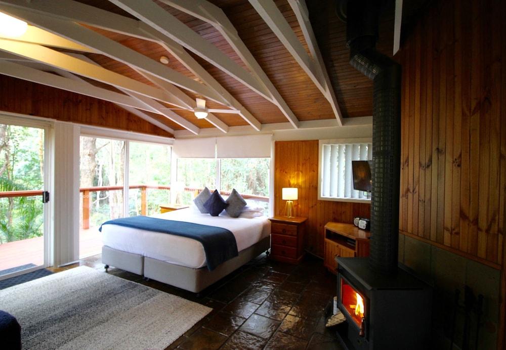 콘달릴라 에코 리조트(Kondalilla Eco Resort) Hotel Image 24 - Guestroom