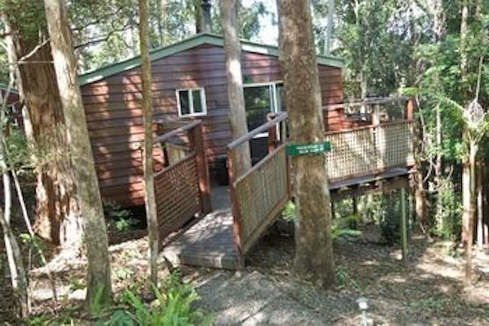 콘달릴라 에코 리조트(Kondalilla Eco Resort) Hotel Image 118 - Exterior