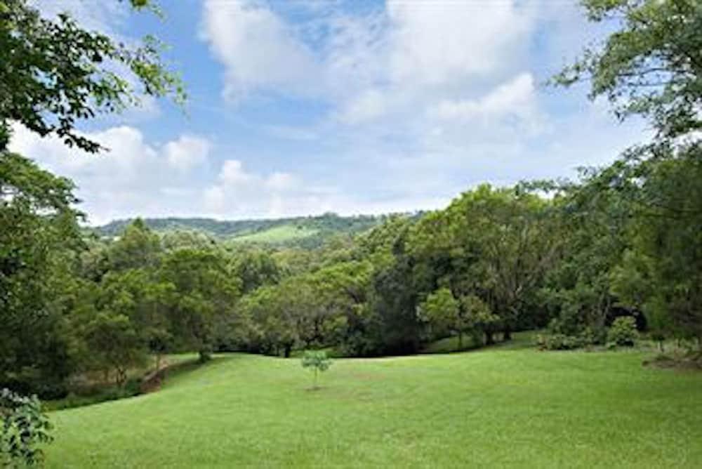 콘달릴라 에코 리조트(Kondalilla Eco Resort) Hotel Image 101 - Property Grounds