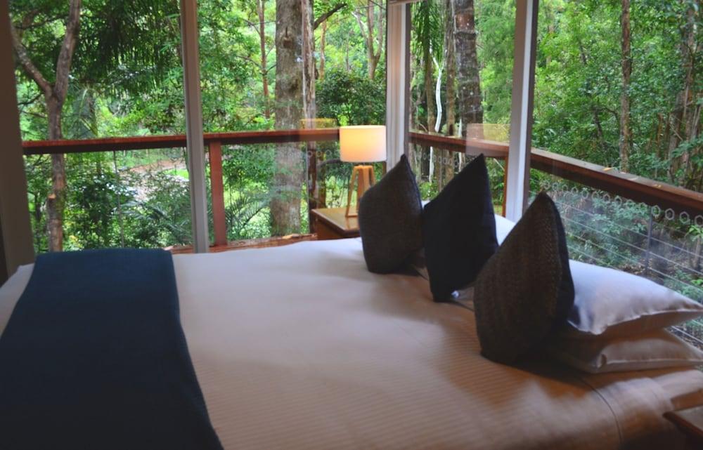 콘달릴라 에코 리조트(Kondalilla Eco Resort) Hotel Image 37 - Guestroom