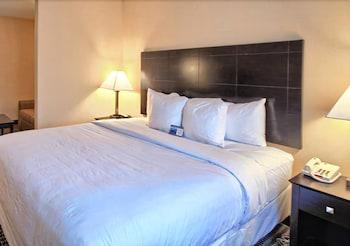 컴포트 스위트(Comfort Suites) Hotel Image 20 - Guestroom