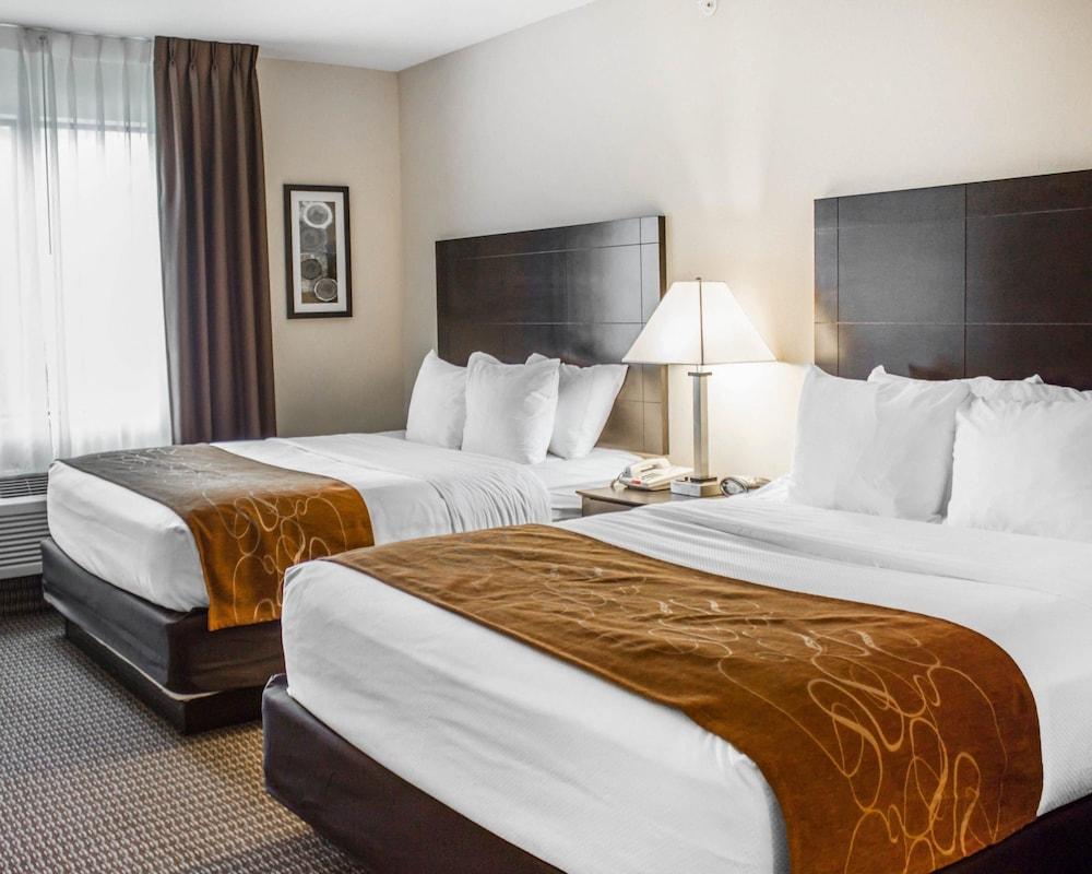 컴포트 스위트(Comfort Suites) Hotel Image 11 - Guestroom