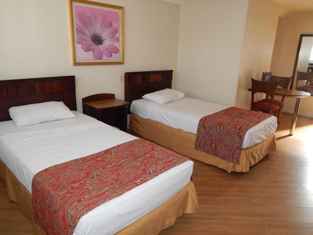 단 인 쿠리티바(Dan Inn Curitiba) Hotel Image 23 - Guestroom