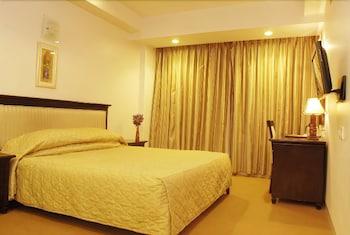 호텔 앰비언스 이그제큐티브(Hotel Ambience Executive) Hotel Image 4 - Guestroom