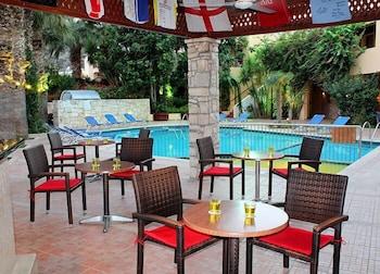 라타니아 아파트먼트(Latania Apartments) Hotel Image 25 - Hotel Bar