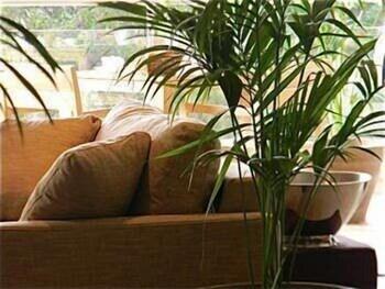 칸 빌라 세인트 바스(Cannes Villa St Barth) Hotel Image 29 - Hotel Lounge