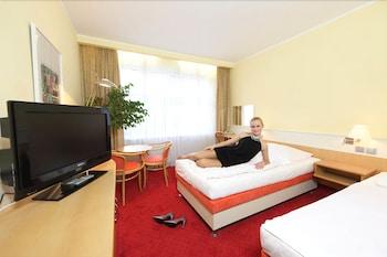 호텔 얀(Hotel Jana) Hotel Image 5 - Guestroom