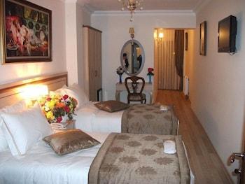술탄 팰리스 호텔(Sultan Palace Hotel) Hotel Image 12 - Guestroom