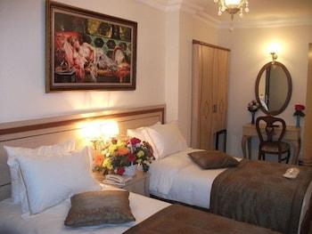 술탄 팰리스 호텔(Sultan Palace Hotel) Hotel Image 14 - Guestroom