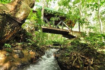 Busuanga Island Paradise Property Grounds