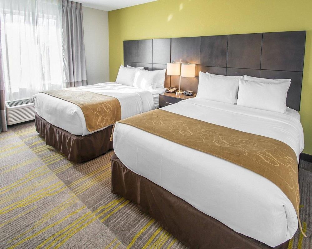 컴포트 스위트 마이애미 에어포트 노스(Comfort Suites Miami Airport North) Hotel Image 18 - Guestroom