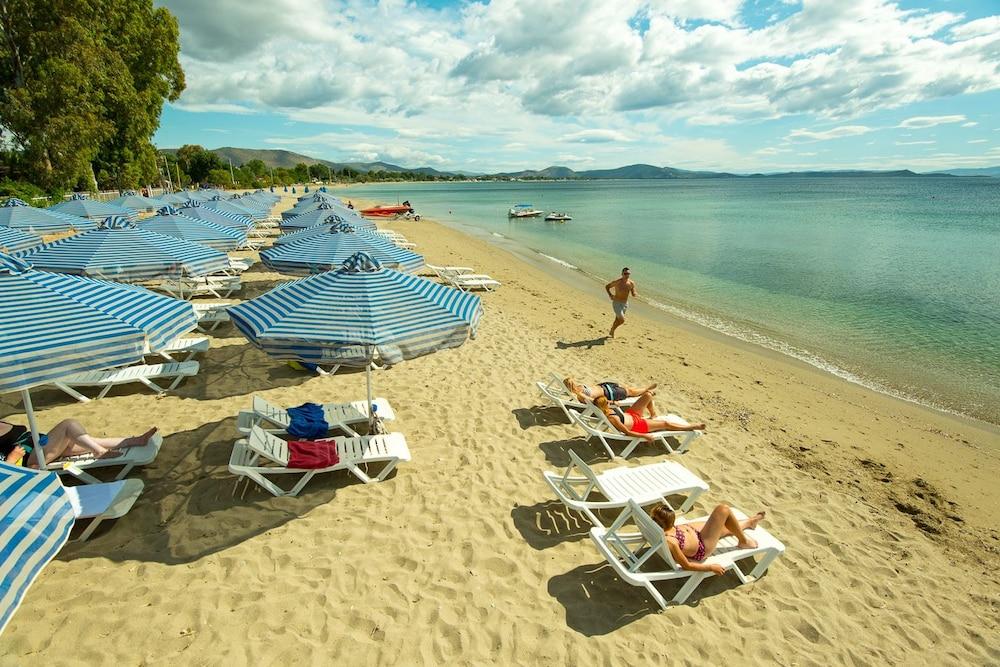 골든 코스트 호텔 & 방갈로 - 올 인클루시브(Golden Coast Hotel & Bungalows - All-Inclusive) Hotel Image 69 - Beach