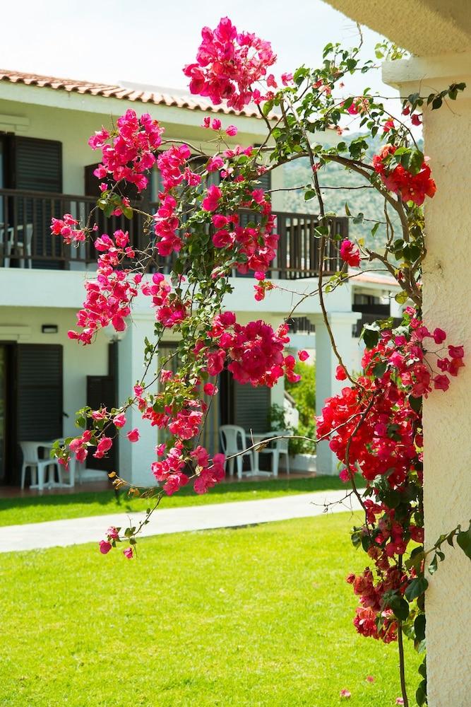 골든 코스트 호텔 & 방갈로 - 올 인클루시브(Golden Coast Hotel & Bungalows - All-Inclusive) Hotel Image 63 - Property Grounds
