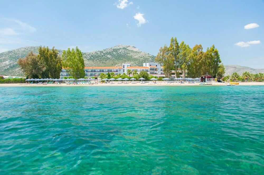 골든 코스트 호텔 & 방갈로 - 올 인클루시브(Golden Coast Hotel & Bungalows - All-Inclusive) Hotel Image 65 - Beach