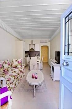 애게안 다이아몬드 부티크 빌라(Aegean Diamonds Boutique Villas) Hotel Image 14 - Living Room