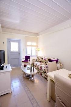 애게안 다이아몬드 부티크 빌라(Aegean Diamonds Boutique Villas) Hotel Image 15 - Living Room