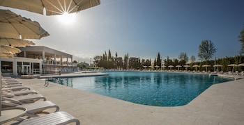 Hotel - Hotel delle Terme