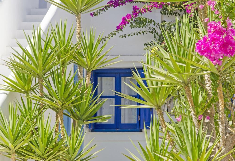모우러스 스튜디오(Mouras Studios) Hotel Image 50 - Property Grounds