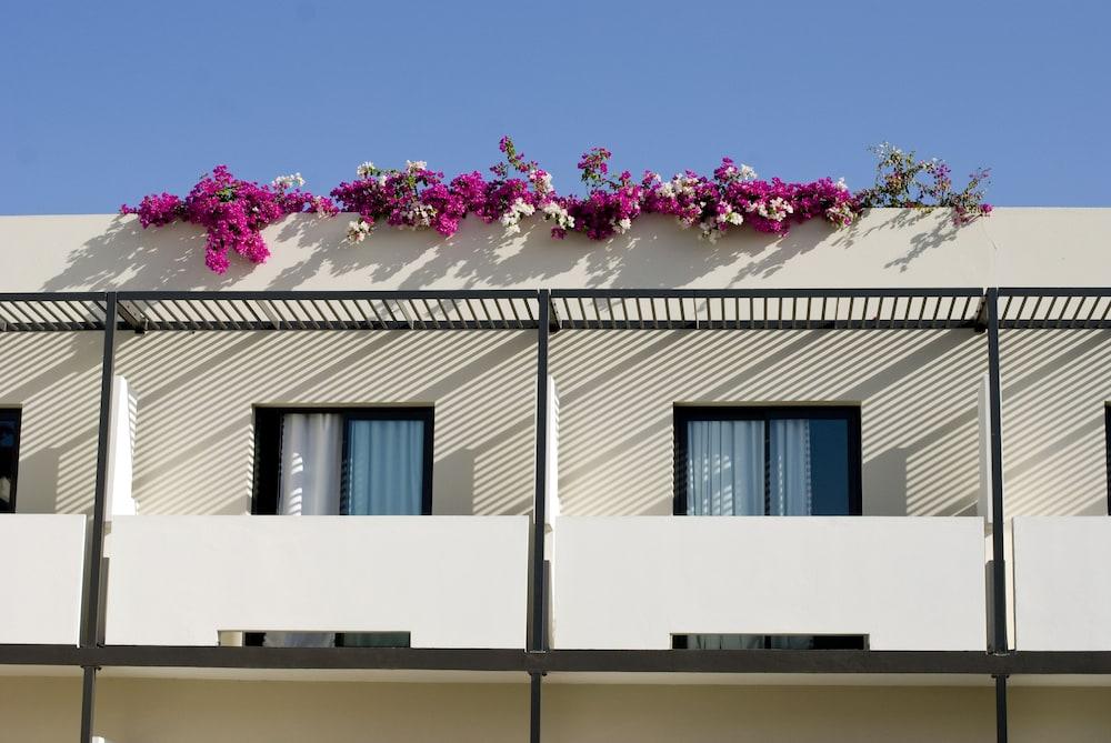 오노모 호텔 다카르(Onomo Hotel Dakar) Hotel Image 39 - View from Hotel