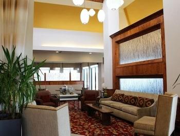 힐튼 가든 인 래피드 시티(Hilton Garden Inn Rapid City) Hotel Image 2 - Lobby Sitting Area