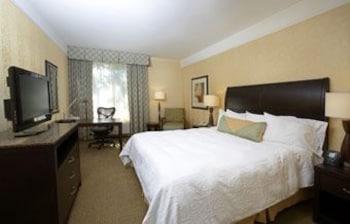 힐튼 가든 인 래피드 시티(Hilton Garden Inn Rapid City) Hotel Image 6 - Guestroom