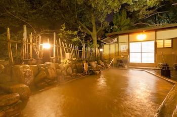 ARIMA ONSEN GEKKOEN YUGETSUSANSO (RYOKAN) Public Bath