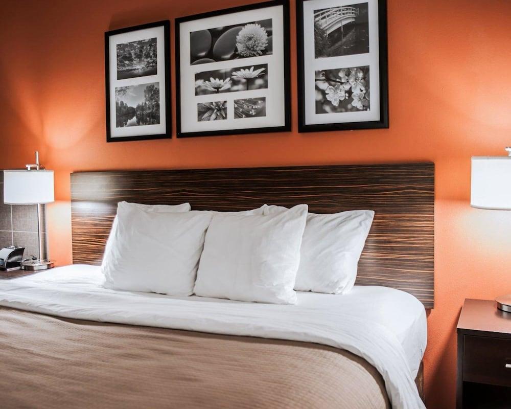 슬립 인 앤드 스위트 포트 캠벨(Sleep Inn & Suites Fort Campbell) Hotel Image 12 - Guestroom