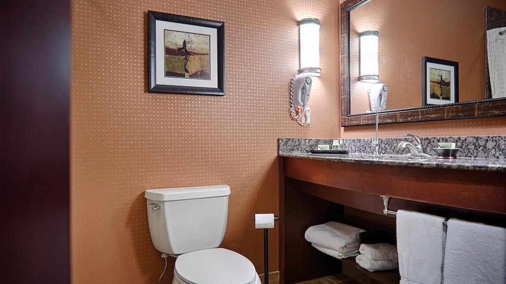 베스트 웨스턴 프리미어 KC 스피드웨이 인 & 스위트(Best Western Premier KC Speedway Inn & Suites) Hotel Image 9 - Bathroom