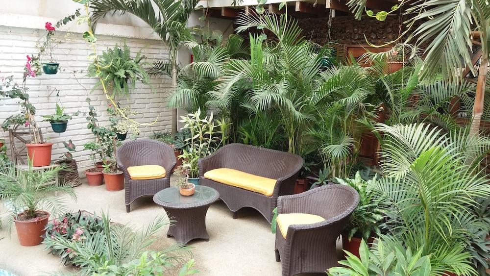 호텔 피에드라 델 마르(Hotel Piedra del Mar) Hotel Image 46 - Terrace/Patio