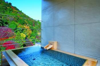 ARIMA ONSEN GEKKOEN KOROKAN (RYOKAN) Deep Soaking Bathtub