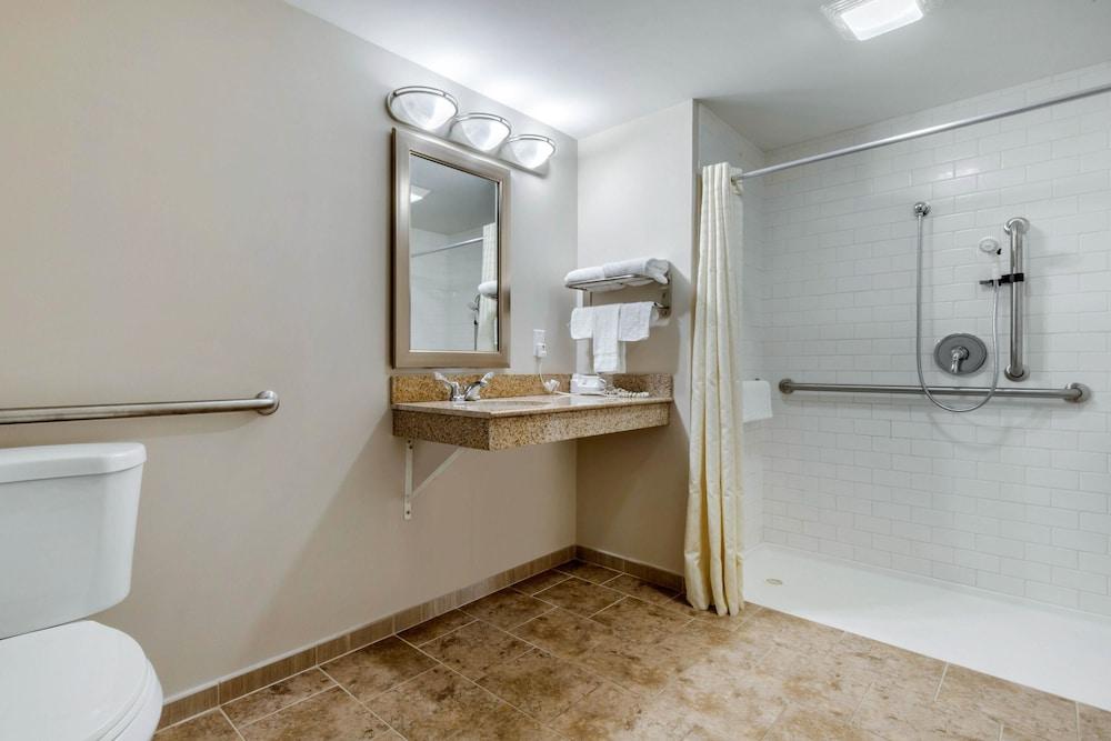 로드웨이 인(Rodeway Inn) Hotel Image 17 - Bathroom