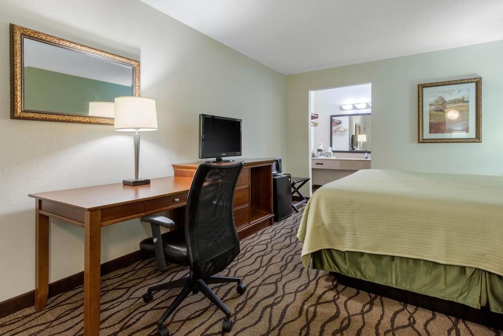 로드웨이 인(Rodeway Inn) Hotel Image 15 - Guestroom