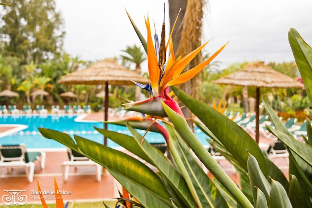레지던스 바이아 델레 팔메(Residence Baia delle Palme) Hotel Image 1 - Pool