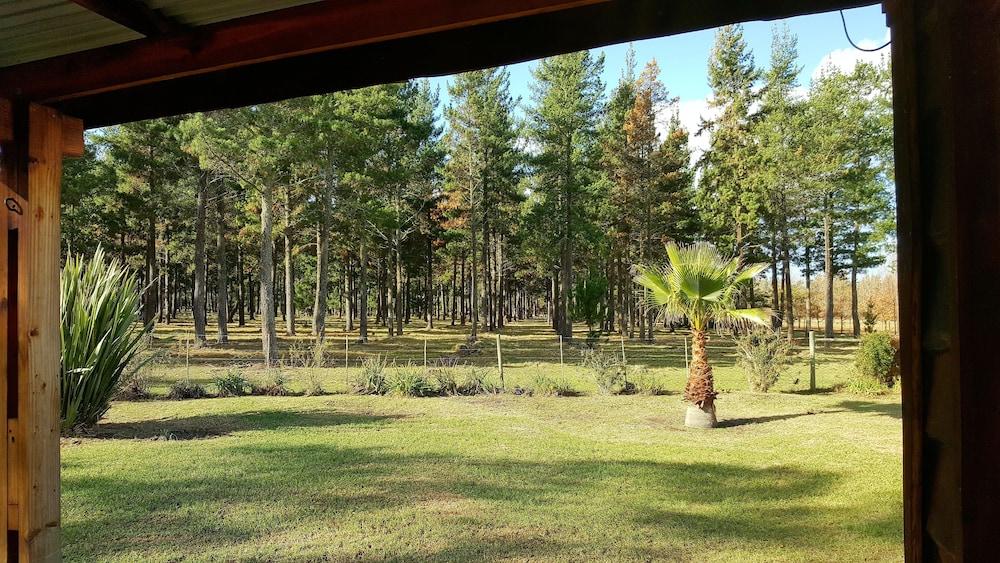 벨라망가 컨트리 하우스(Bellamanga Country House) Hotel Image 49 - Guestroom View
