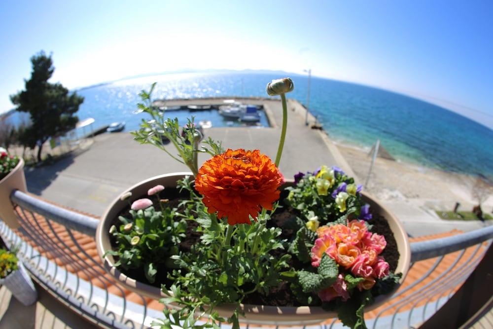 호텔 델핀(Hotel Delfin) Hotel Image 37 - Guestroom View