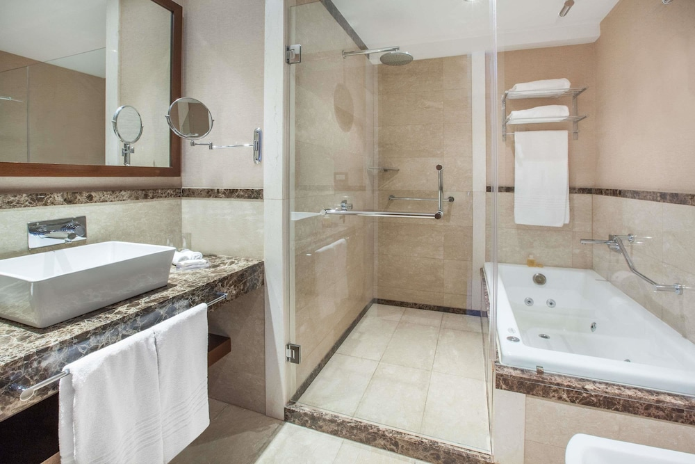 윈덤 노르델타 티그레 부에노스아이레스(Wyndham Nordelta Tigre Buenos Aires) Hotel Image 20 - Bathroom