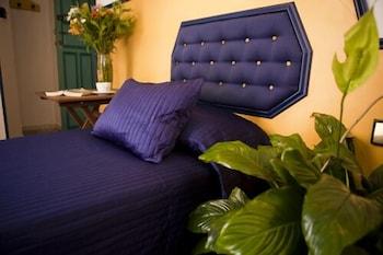 펜션 누에보 피노(Pension Nuevo Pino) Hotel Image 5 - Guestroom
