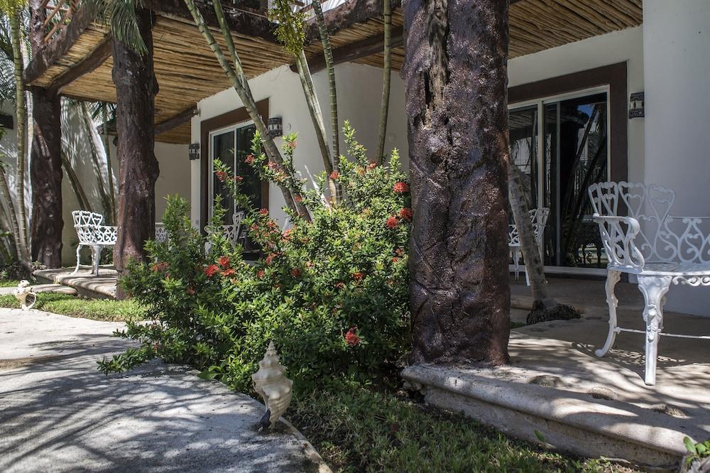 호텔 마야 델 카르멘(Hotel Maya del Carmen) Hotel Image 1 - View from Hotel