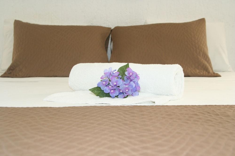 호텔 마야 델 카르멘(Hotel Maya del Carmen) Hotel Image 4 - Guestroom
