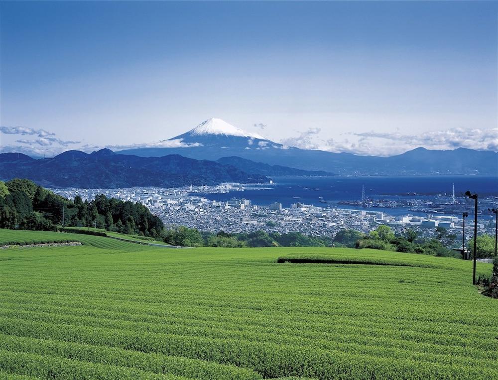 시주오카 키타 워싱턴 호텔 플라자(Shizuoka Kita Washington Hotel Plaza) Hotel Image 14 - Mountain View