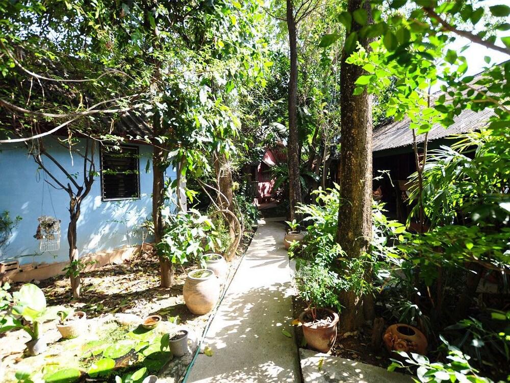 수코타이 게스트 하우스(Sukhothai Guest House) Hotel Image 32 - Property Grounds