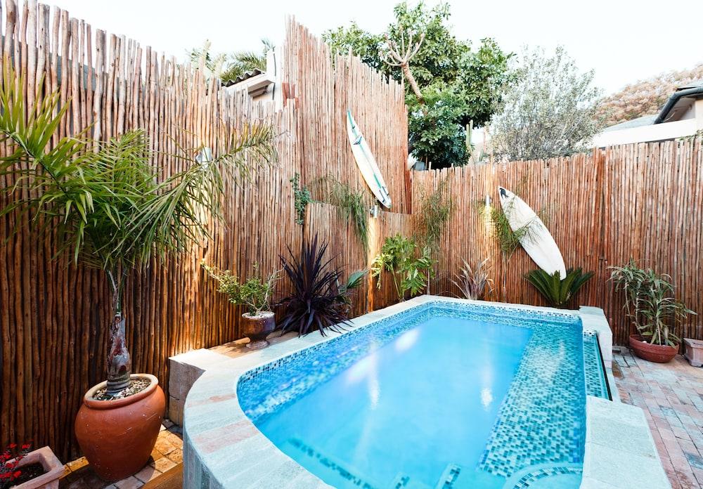 스위트 올리브 게스트하우스(Sweet Olive Guesthouse) Hotel Image 22 - Outdoor Pool