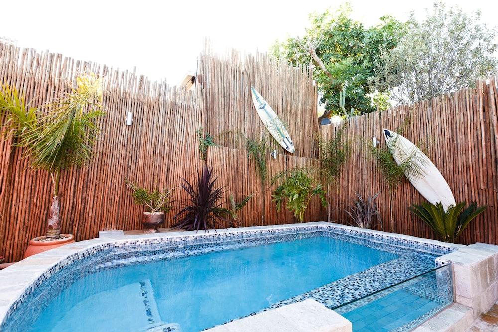 스위트 올리브 게스트하우스(Sweet Olive Guesthouse) Hotel Image 23 - Outdoor Pool