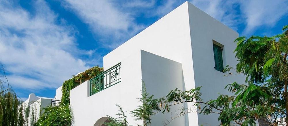 아스티르 오브 낙소스(Astir of Naxos) Hotel Image 44 - Property Grounds