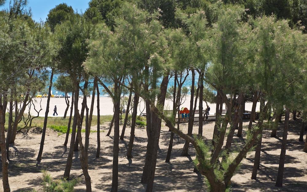 사예스 비치(Sallés Beach) Hotel Image 17 - Beach