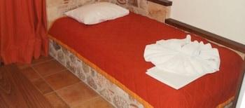 아크타이온 호텔(Aktaion Hotel) Hotel Image 4 - Guestroom